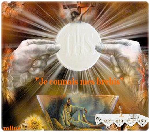 Contemplons le Christ